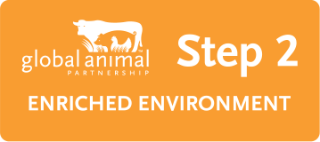 GAP Animal Welfare Rating Labels: Step 2