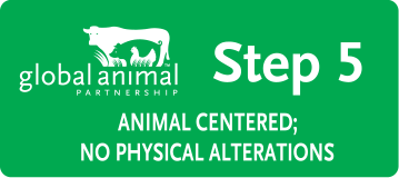 GAP Animal Welfare Rating Labels: Step 5