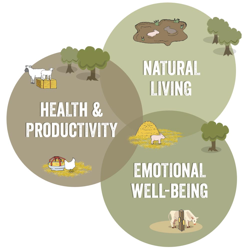 Components of Animal Welfare - Global Animal Partnership
