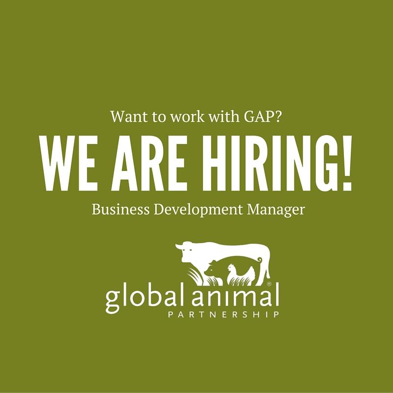 HIRING: Business Development Manager Position