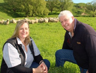 New Zealand sheep ranch first in world to achieve GAP animal welfare certification for lamb