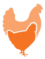 Higher Welfare Chicken Initiative Icon