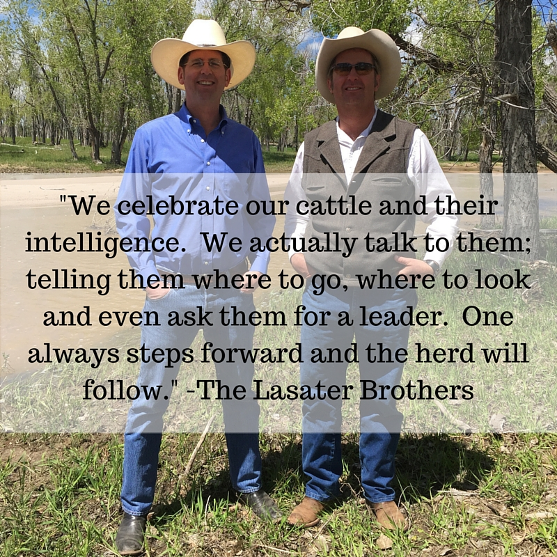Meet the Lasater Brothers from Lasater Grasslands Beef