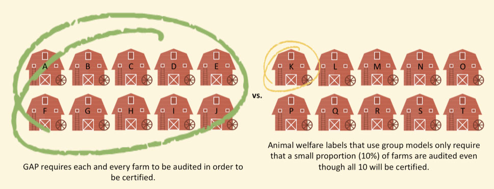 Animal Welfare Label: GAP Audits Every Farm Every 15 Months