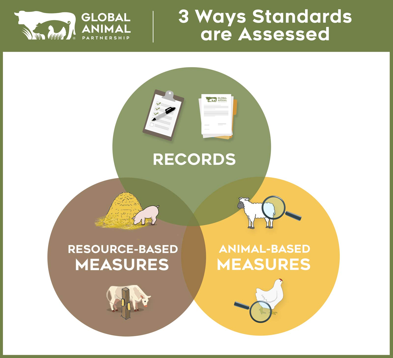 G.A.P. Farm Audit: 3 Ways Standards are Assessed