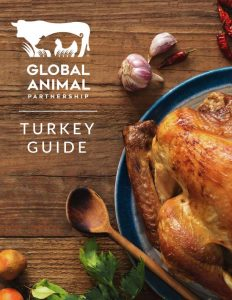 G.A.P. Turkey Guide