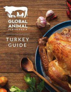 GAP Turkey Guide