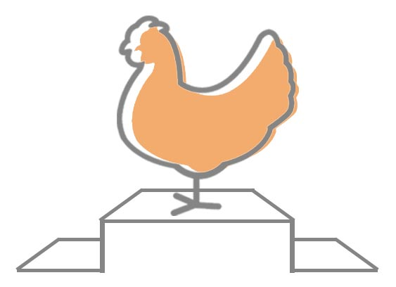 G.A.P. Better Chicken Welfare Initiative