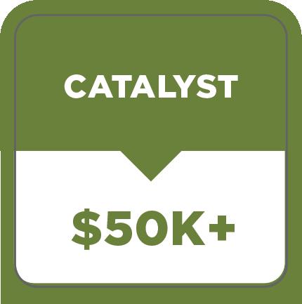 G.A.P. Partner - CATALYST